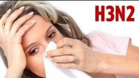 H3N2 Virüsü Nedir? H3N2 Virüsünden Korunma Yollları Nelerdir?